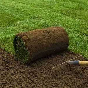 turf roll being laid on raked soil
